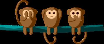 monkey-2803416_960_720