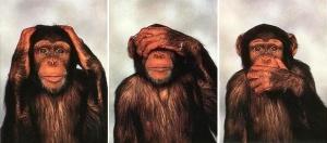 trois_singes